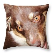 Talking Dog Throw Pillow by Gwyn Newcombe