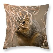 Tall Grasses Make Up A Fox Squirrels Throw Pillow by Joel Sartore
