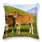 Taranaki, Dairy Cows Throw Pillow by Himani - Printscapes