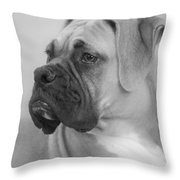 The Boxer Dog - the Gentleman amongst dogs Throw Pillow by Christine Till