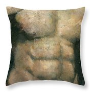 The Boxer Throw Pillow by Steve Mitchell