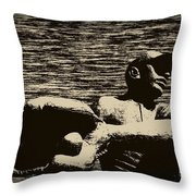 The Catch Throw Pillow by Bill Cannon