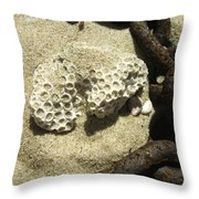 The Chain And The Fossil Throw Pillow by Trish Tritz