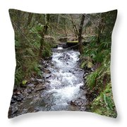 The Creek Throw Pillow by Laurie Kidd