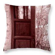 The Door Throw Pillow by Wayne Potrafka