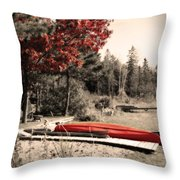 The End Of Summer Throw Pillow by Cathy  Beharriell