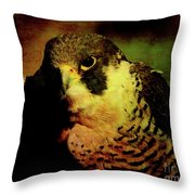 The Falcon Throw Pillow by Wingsdomain Art and Photography