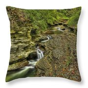 The Flow Throw Pillow by Evelina Kremsdorf