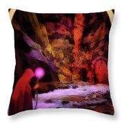 The Hermit Throw Pillow by John Edwards