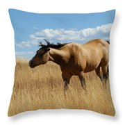 The Horse Throw Pillow by Ernie Echols
