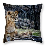 The Lioness Throw Pillow by Karol  Livote