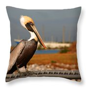 The Most Beautiful Pelican Throw Pillow by Susanne Van Hulst