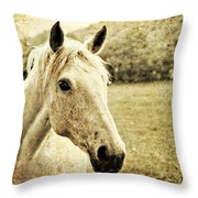 The Old Grey Mare Throw Pillow by Meirion Matthias