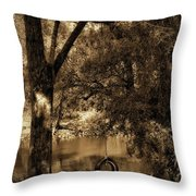 The Old Tire Swing Throw Pillow by Bill Cannon