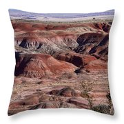 The Painted Desert  8062 Throw Pillow by James BO  Insogna