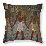 The Painted Walls Inside A Tomb Throw Pillow by Taylor S. Kennedy