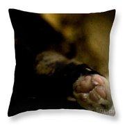 The Paw Throw Pillow by Angel  Tarantella