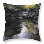 The River At Lady Bagots Throw Pillow by Harry Robertson