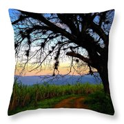 The Road Less Traveled Throw Pillow by Skip Hunt