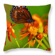 The Soldier Throw Pillow by Melanie Moraga