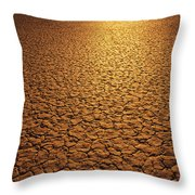 The Sun Reflects Off This Parched Lake Throw Pillow by Bill Hatcher