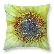 The Sunflower Throw Pillow by Tara Turner
