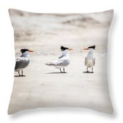 The Talking Terns Throw Pillow by Lisa Russo