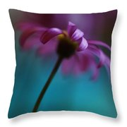 The View Above Throw Pillow by Kym Clarke
