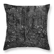 Thoreau Woods Black And White Throw Pillow by Lawrence Christopher