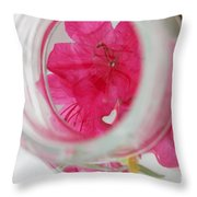 Through The Looking Glass Throw Pillow by Amanda Barcon