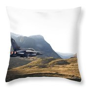 Thunder In The Glen Throw Pillow by Pat Speirs