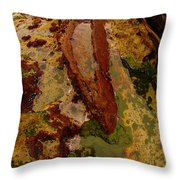 Tide Pool Throw Pillow by Harry Spitz