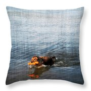 Time to Fetch Throw Pillow by Joan  Minchak