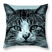 Tom Cat Throw Pillow by Tony Grider