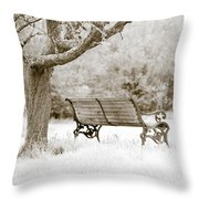 Tranquility Throw Pillow by Frank Tschakert