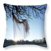 Transparent Fabric Throw Pillow by Bernard Jaubert
