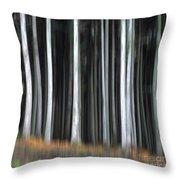 Trees Trunks Throw Pillow by Bernard Jaubert