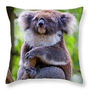 Treetop Koala Throw Pillow by Mike  Dawson