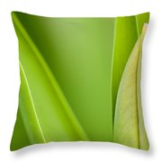 Tulip Throw Pillow by Silke Magino