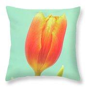 Tulip Throw Pillow by Wim Lanclus