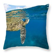 Turtle Taking A Breath Throw Pillow by Dave Fleetham - Printscapes