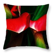 Twins Throw Pillow by Elfriede Fulda