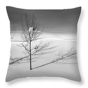 Twins Throw Pillow by Skip Hunt