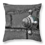 Twist And Turn Throw Pillow by Evelina Kremsdorf
