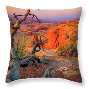 Twisted Remnant Throw Pillow by Inge Johnsson