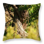 Twisted Tree Throw Pillow by Alan Look