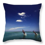 Two Bottlenose Dolphins Dancing Across Throw Pillow by Natural Selection Craig Tuttle