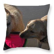 Two Yellow Labs Tug At The Frizbee Throw Pillow by Stacy Gold