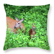 Uh Oh Spotted Throw Pillow by Karol  Livote