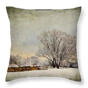 Unity Park 1 Throw Pillow by Al  Mueller